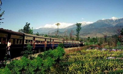 Palampur Toy Train