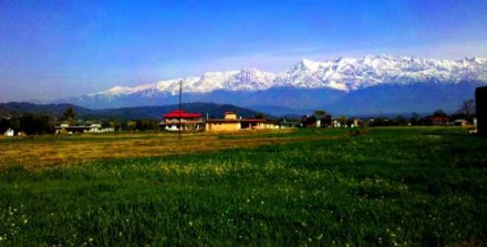 Palampur Valley View